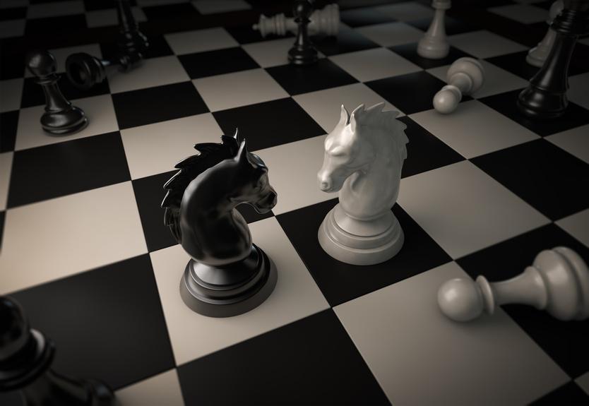 Wir sehen ein Schachbrett. Das weiße und das schwanze Pferd stehen sich gegenüber.