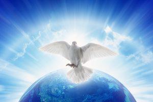 Über eine blauen Erdkugel schwebt eine weiße Taube.